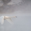 ATS-13-34: Morning flight on the Mississippi