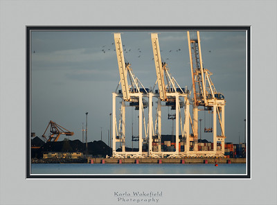 Robert's Bank coal and container port - #2