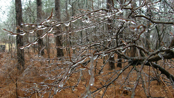 Precursor to 2010 winter snows--ice storm about a week prior to arrival of snow.