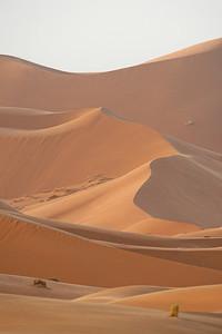 5.5.2017 Sahara, Morocco