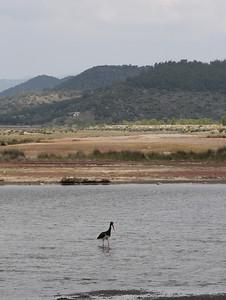 14.5.2011 Lesvos, Greece