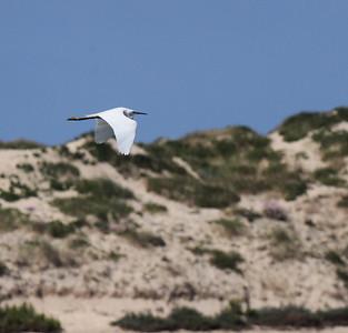 15.5.2010 Faro, Portugal