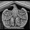 At a traffic light, snapped a photo a stone eagle that graces the front of the historic Hotel North Bend (built in 1922).  <br /> <br /> Look at that fantastic detail!  One can see that the sculptor took pride in their work.    <br /> <br /> North Bend, Oregon Coast  (2015)