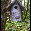 Birch Birdhouse
