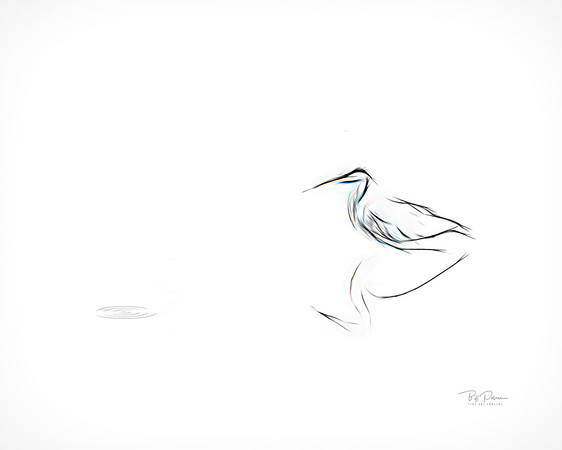 Simple Blue Heron Sketch