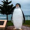 Giant Penguin--- Penguin Australia