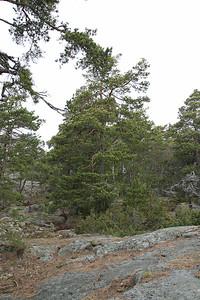 12.4.2012 Kirkkonummi, Finland