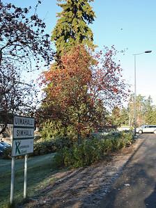 28.10.2012 Grankulla, Finland