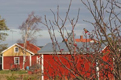 21.10.2013 Parainen, Finland