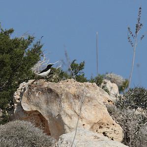 27.10.2011 Cyprus