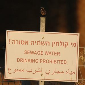 26.11.2010 Eilat, Israel