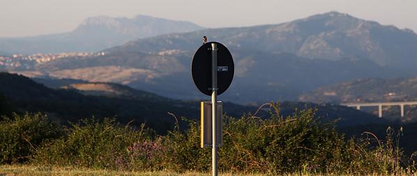 17.6.2013 Sardinia, Italy