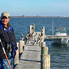 """<div align=""""left"""">Warden, Tim Wilkinson pausing in front of the pelicans hanging out at the dock during a visit to Chester Island to check the condition of the rookery. <em>Photo credit: Peggy Wilkinson</em> </div>"""