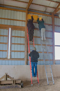 Barn Owl Box Installation at Chinook Mine Equestrian Center.  Nick Brown, Amy Kearns and Jeremiah Latta.  Clay County, Indiana, December 15, 2012.
