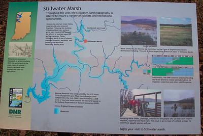 Stillwater Marsh, Monroe County, Indiana, March 2013.