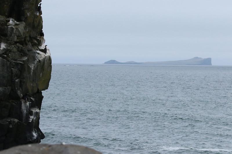 Sea Otter Island