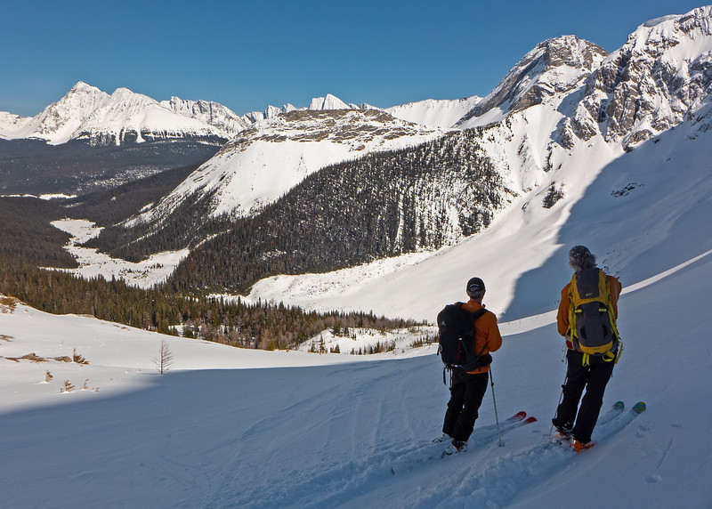 """Plotting the best descent route to the Commonwealth Creek valley. In the sun with it's grabby moist snow, or into the shade with the promise of dry powder? The """"powder"""" turned out to be affected by wind, and sluffing from the cliffs of Birdwood. Skiable, but not great."""