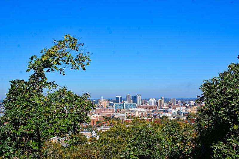 """Well I believe Birmingham has a """"Joshua Tree"""" of it's own."""