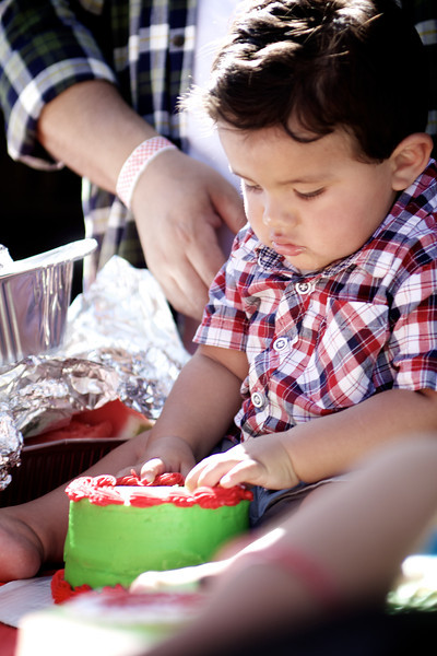 Evan's First Birthday Party
