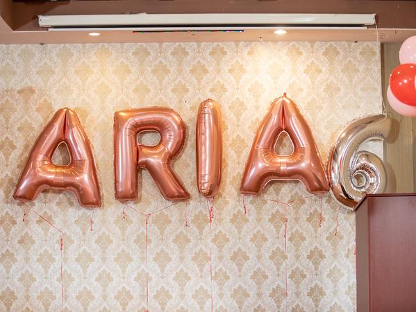 Aria-3
