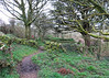 Chapel dating from 12th century, almost certainly standing on a much more ancient, pagan site