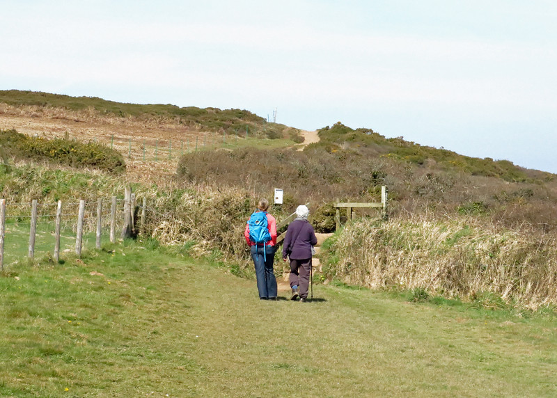 Next day Jeanne, Colin and Elaine set off along the coast path to Mutton Cove to sea the seals and to Godrevy lighthouse of Virginia Woolf fame.