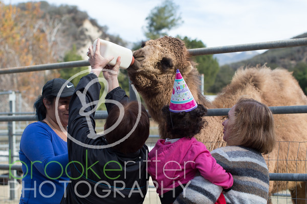 Haley Bryson's Birthday