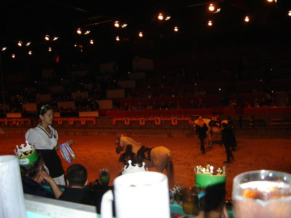 016 Medieval Times 14