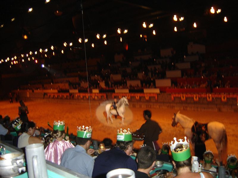 019 Medieval Times 17