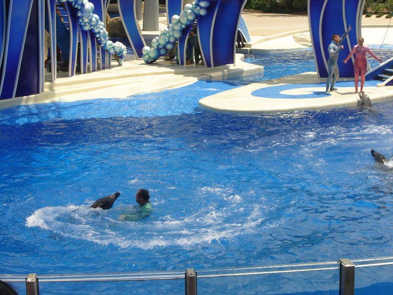 057 Sea World 07