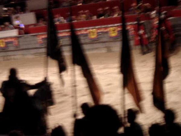 050 Medieval Times 38