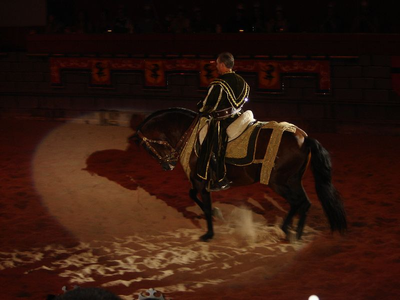 041 Medieval Times 29