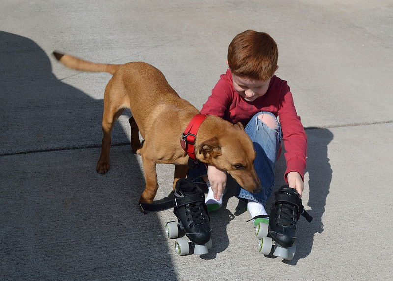 Doogie Dog helping Aidan with his skates