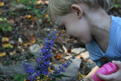 Aiden smelling the flowers.
