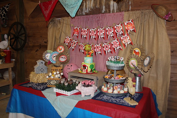 Riley's 2nd Birthday -  Barn Bash (12/11/16)
