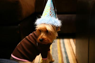 Sadie's 3rd Birthday