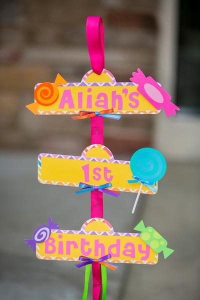 Wheaton IL  // Cantigny Park // Aliah's 1st Birthday