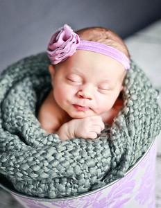 Baby Bari