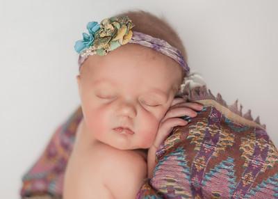 Baby Harlowe