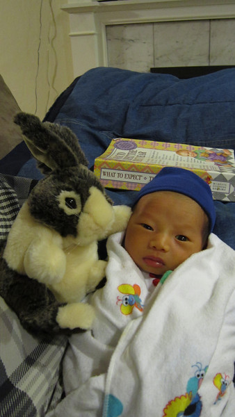 March 29, 2011 - Hanging out at home with Daddy and Thumper.