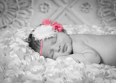 Annabelle's newborn session