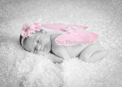 Baby Madelyn newborn session