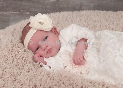 Elizabeth's Newborn Session