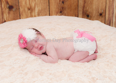 Noelle's Newborn Session