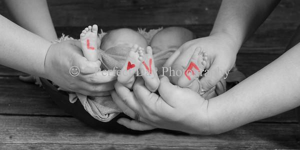 The Knapp Twins Newborn Session