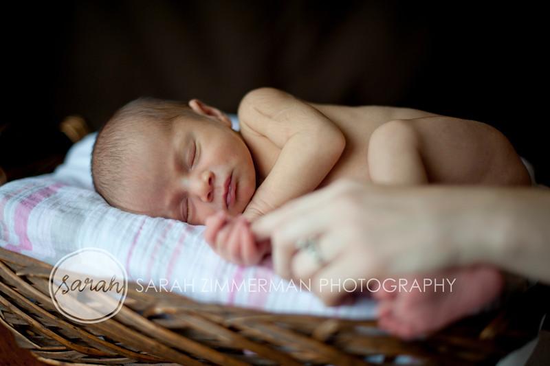 03_HR_Boley-newborn