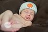 39_HR_Boley-newborn