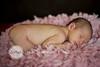 04_HR_Boley-newborn