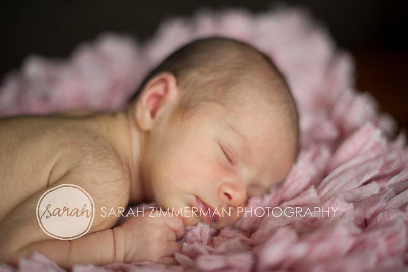 05_HR_Boley-newborn