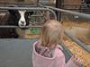 Odds Farm Jan 2014 005